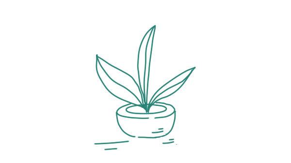 plantinbak2-def
