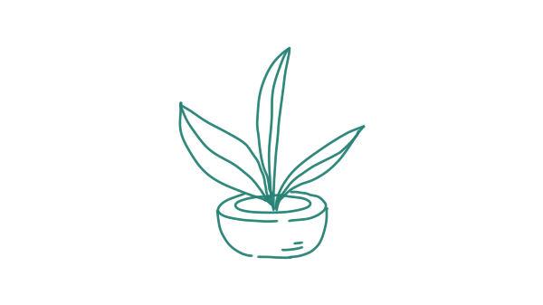 plantinbak2